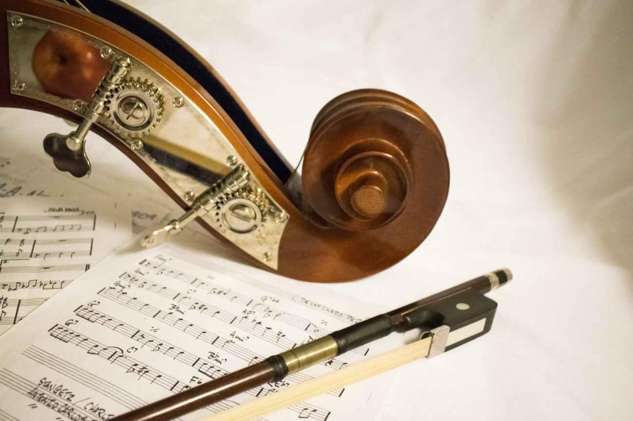 arc art bass bowed string instrument