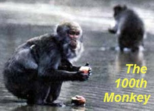 The 100th Monkey Effect : Quantum Evolution - Psychedelic ...