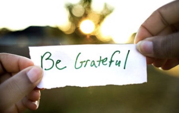 Never Forget To Show Gratitude Throughout Life | by Ja ...